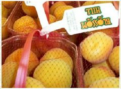 bags-of-apricots